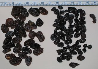 Raisin - California seedless grape raisins on the left and California Zante currants on the right, along with a metric ruler for scale.