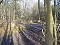 Gravelhill Gate, Netley Heath - geograph.org.uk - 668219.jpg