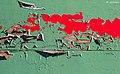 Green Red Dory 12.jpg