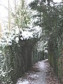 Green arch on a footpath - geograph.org.uk - 1656007.jpg