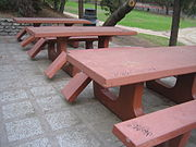 Destroyed picnic table seats and tagging in south Griffith Park.
