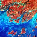Guinea-Bissau, a small country in West Africa. Original from NASA. Digitally enhanced by rawpixel. - 42179976364.jpg