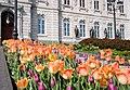 Hôtel du Parlement du Québec (525593423).jpg