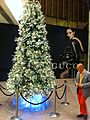 HK Central Landmark night Xmas tree Nov-2013 Gucci shop.JPG