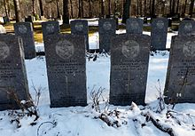 Colour photo of two rows of dark grey gravestones