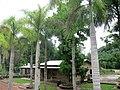 Hacienda Lealtad, former coffee plantation using slave labor in Lares, Puerto Rico 17.jpg