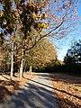 Hackleburg, AL 35564, USA - panoramio (6).jpg