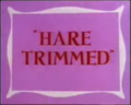 Hare Trimmed.png