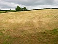 Harvested Field near Ashey - geograph.org.uk - 530675.jpg