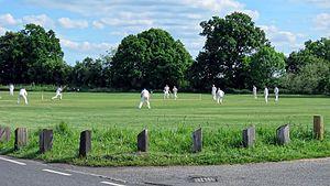 Hatfield Heath - Hatfield Heath village green cricket match