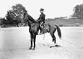 Hauptmann im Generalstab Iselin, Teilnehmer des Pferderennens in Thun - CH-BAR - 3240586.tif