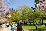 High Park, Toronto DSC 0188 (17391760352).jpg
