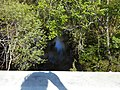 Hillsborough River; NE from FL 39 Bridge.JPG