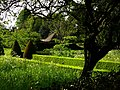 Hinton Ampner, view from churchyard - geograph.org.uk - 797062.jpg