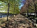 Hoboken Esplanade (7103910507).jpg
