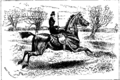 Horsemanship for Women 133.png