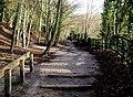 Humber Bridge Country Park, Hessle - geograph.org.uk - 292805.jpg