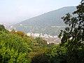 III. Heidelberg, Blick von der Molkenkur über den Neckar auf das Neuenheimer Ufer, Philosophenweg, Heiligenberg und Neuenheim 0161 .JPG