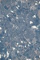 ISS056-E-153343 - View of Germany.jpg