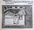 Iacobus de Cessolis, Libro di giuocho di scacchi, incunabolo, per maestro antonio miscomini, firenze 1 marzo 1493, 13 medici e speziali.jpg