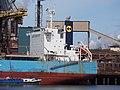 Ikan Kerapu (ship, 2015) IMO 9697959, IJmuiden pic3.JPG