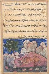 Page from Tales of a Parrot (Tuti-nama): Fifteenth night: The lion disturbed by mice who eat the food trapped in his aging teeth