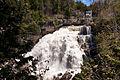 Inglis Falls (3564530816).jpg