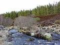 Island in the Abhainn Sgitheach river - geograph.org.uk - 643884.jpg