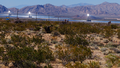 Ivanpah Solar Power Facility from Nipton Rd.png