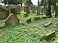 Jüdischer Friedhof Köln-Bocklemünd - Gräberfelder (10).jpg