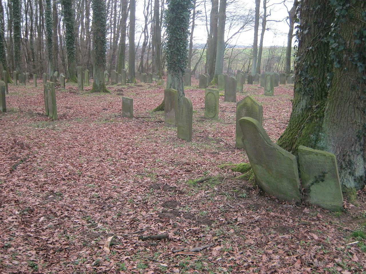Jüdischer Friedhof Weyhers 025.JPG