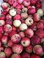 Jablka (6).jpg
