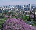 Jacaranda City, Tshwane, Pretoria, South Africa (2418526898).jpg