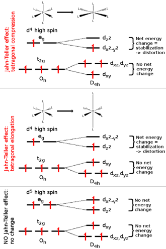 Jahn–Teller effect - Above: JT effect is observed as tetragonal elongation and compression in octahedral high-spin d4 complexes due to net change in the energy of electrons (notice odd amount of electrons in eg-orbital). Below: JT effect doesn't occur if there is no net change in energy (notice even amount of electrons in eg-orbital).