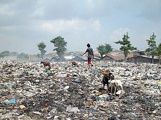 Waste picker - Scavenging in Jakarta, Indonesia