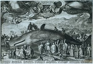 Beverwijk - Engraving from 1601 by Jan Saenredam of a beached whale on the coast near Beverwijk
