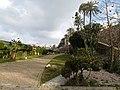 Jardín en Ceuta.jpg