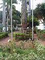 Jardín externo visto desde la calle 37 (3).JPG