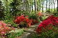 Jenkins Arboretum - DSC00591.JPG