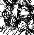 Jesus Christ The Child by Wissam Shekhani, ink on paper.JPG