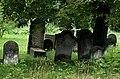 Jewish cemetery Pruszkow IMGP6818.jpg