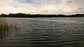 Jezioro czaplino.jpg