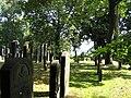 Juedischer Friedhof Hamburg Harburg 1.jpg
