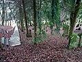 Juedischer Friedhof Oberoewisheim 01 Treppe fcm.jpg