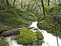 Just below Cataract Falls. - panoramio.jpg