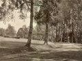 KITLV - 79916 - Kleingrothe, C.J. - Medan - Tyersall near Singapore - circa 1910.tif