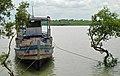 Kaikhali Sundarbans 15-09-2011 (4).JPG