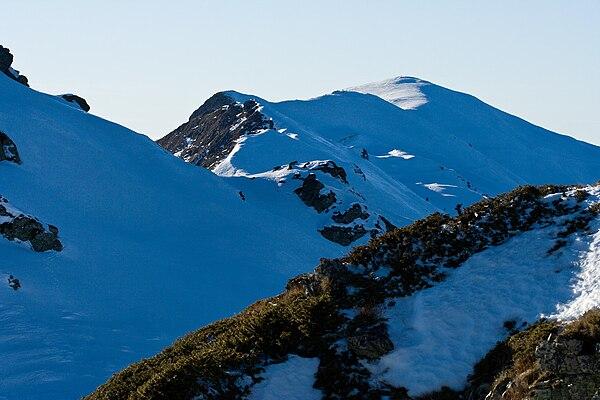 Radomir (mountain)