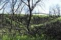 Kamyshinsky District, Volgograd Oblast, Russia - panoramio (86).jpg