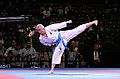 Karate WM 2014 (2) 019.JPG